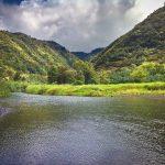 Vegan Travel: Maui, The East Side