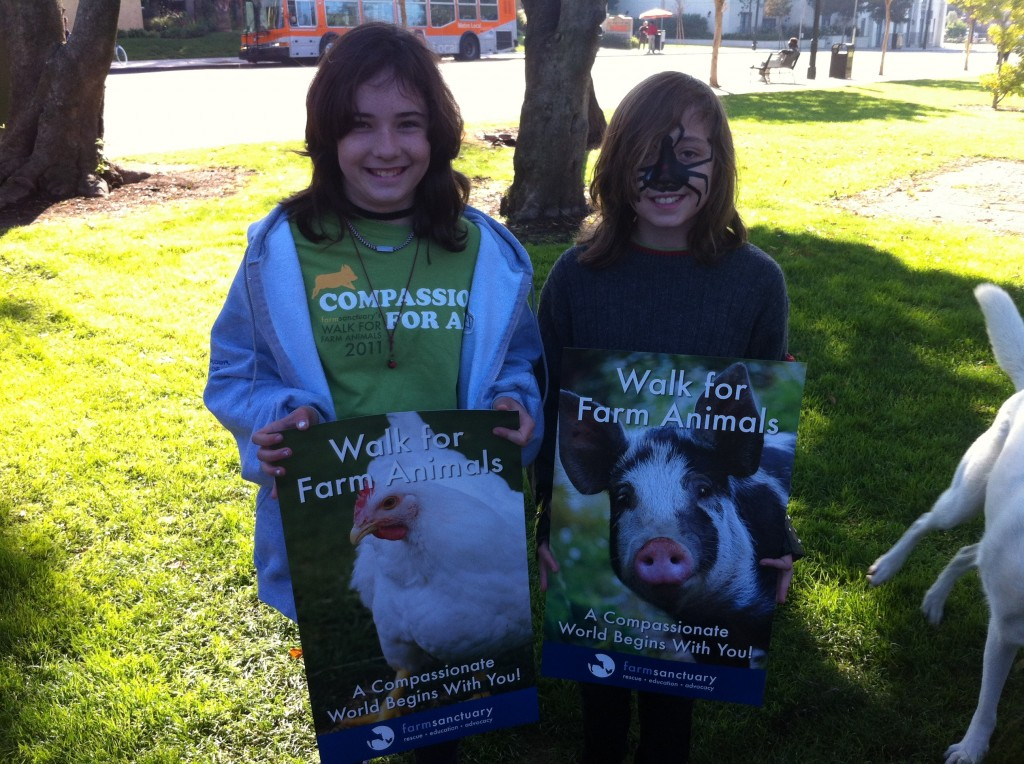 Why I Am Walking For Farm Animals