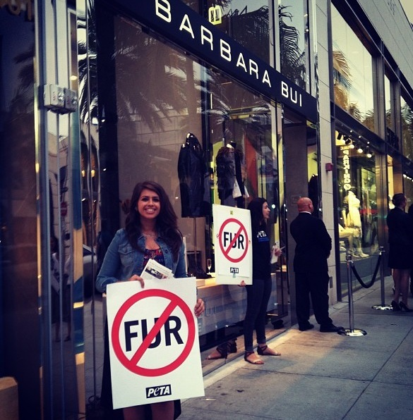 No Fur!