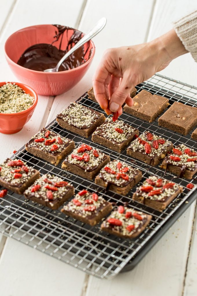 Hemp Chocolate-Berry Protein Bars