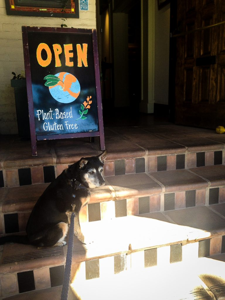 Adama Vegan Comfort Cuisine | Santa Barbara