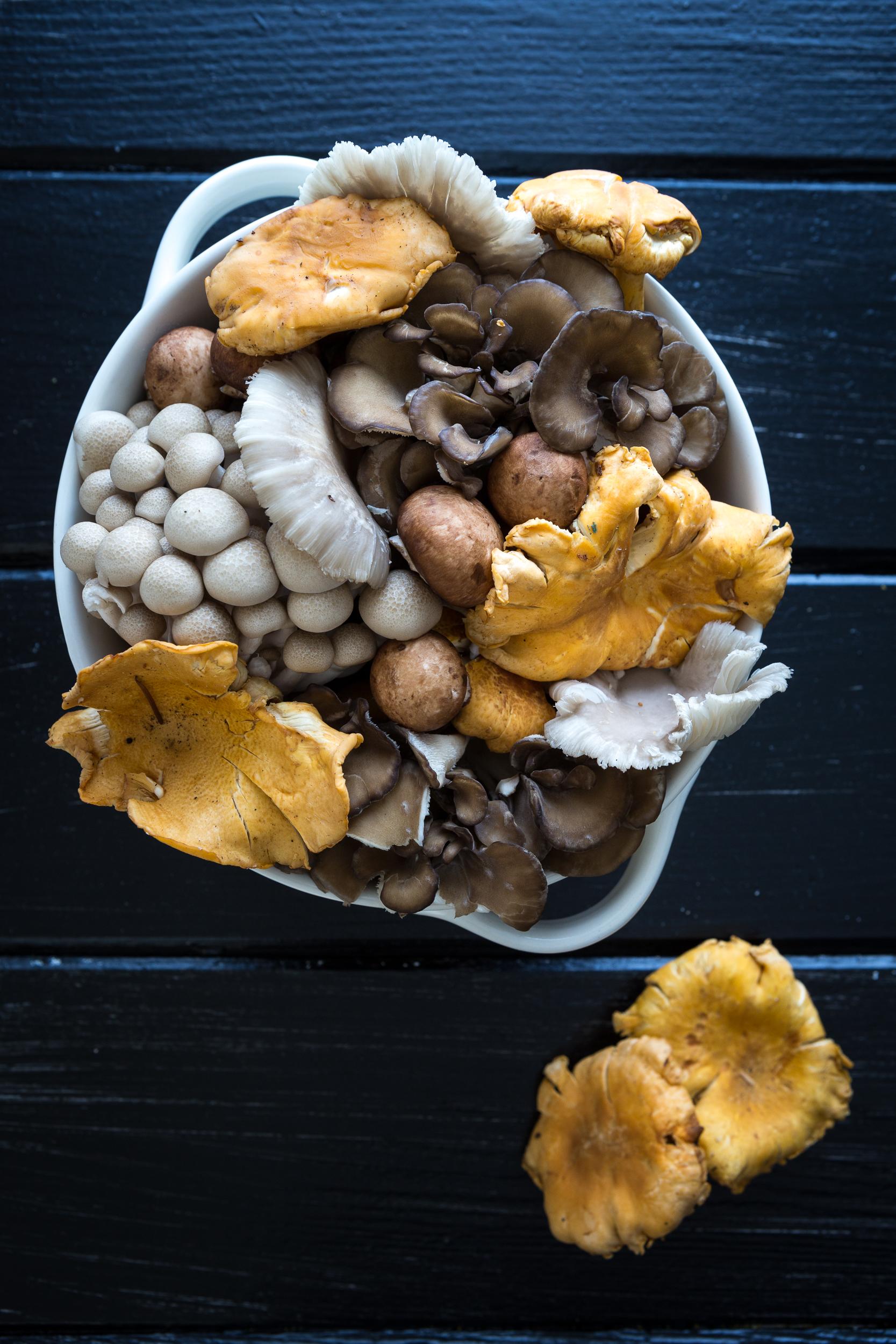 Wild Mushroom Potato Pie