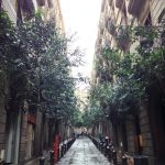Vegan Travel: Barcelona, Spain- Part 3