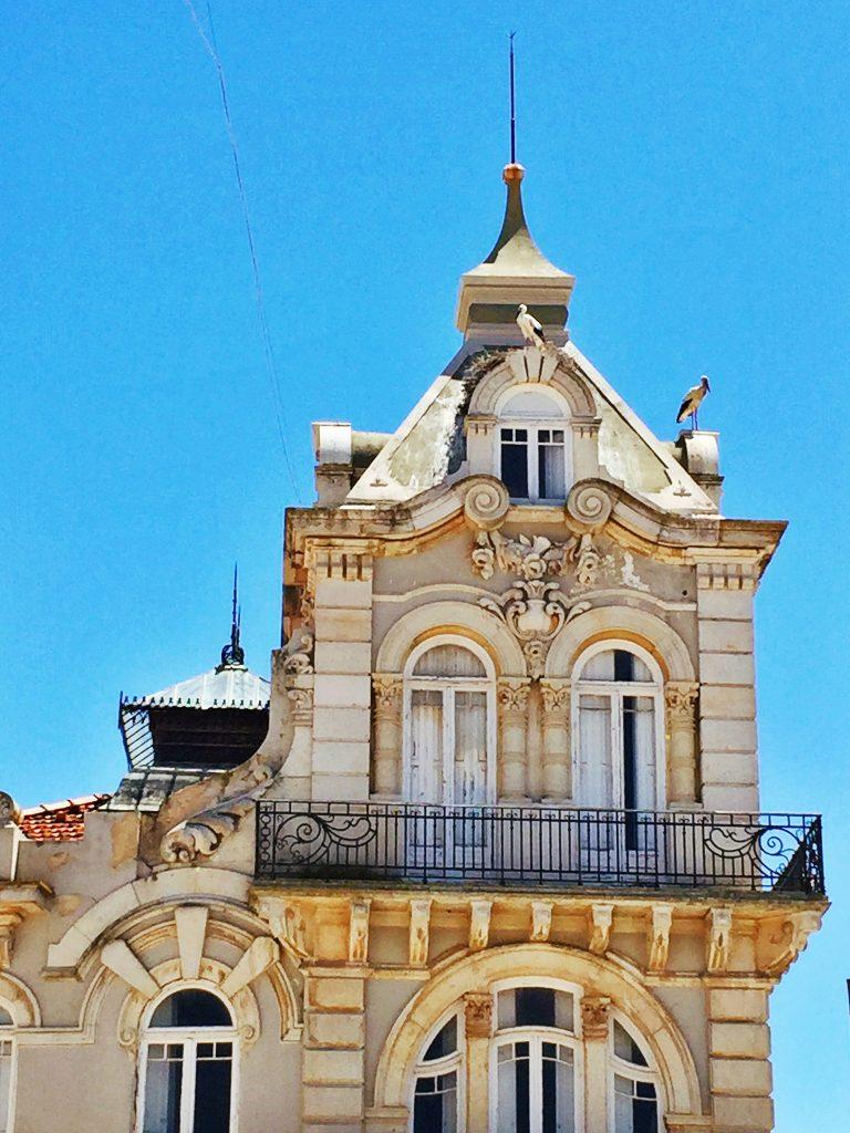 Algarve Stork