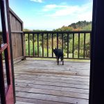 Vegan Travel: Mendocino, California & Stanford Inn By The Sea